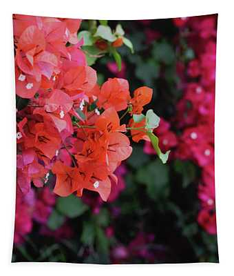Blooming Bougainvillea- Photography By Linda Woods Tapestry