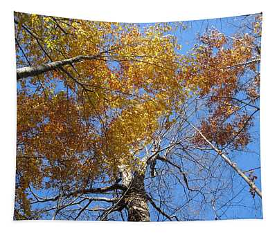 Blue And Gold Tapestry