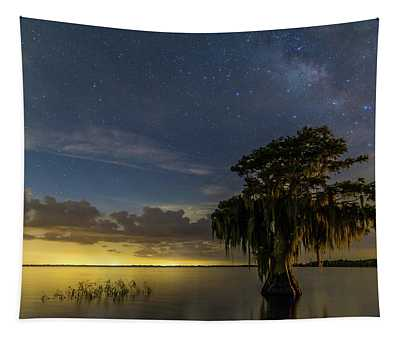 Blue Cypress Lake Nightsky Tapestry