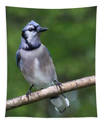Blue Jay On Alert Tapestry