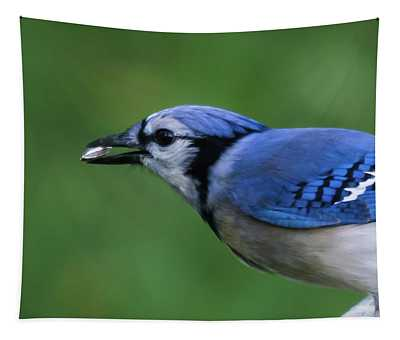 Blue Jay With Seed Tapestry