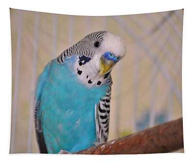 Blue Parakeet Tapestry