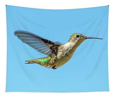 Blue Sky Hummingbird Tapestry