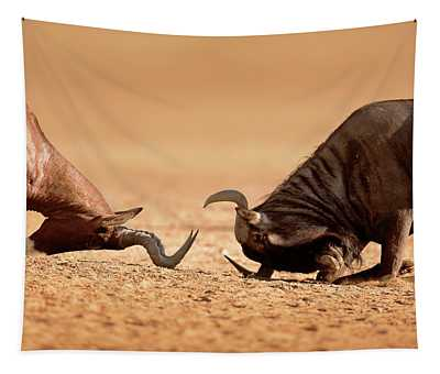Blue Wildebeest Sparring With Red Hartebeest Tapestry