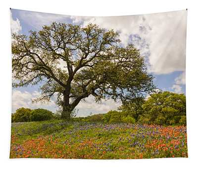 Bluebonnets Paintbrush And An Old Oak Tree - Texas Hill Country Tapestry