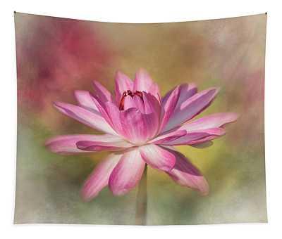 Blushing Pink Tapestry