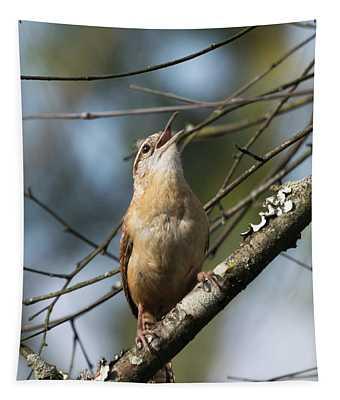 Bobolink Singing Tapestry