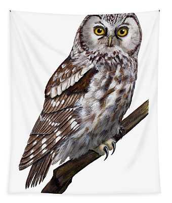 Boreal Owl Tengmalm's Owl Aegolius Funereus - Nyctale De Tengmalm - Paerluggla - Nationalpark Eifel Tapestry