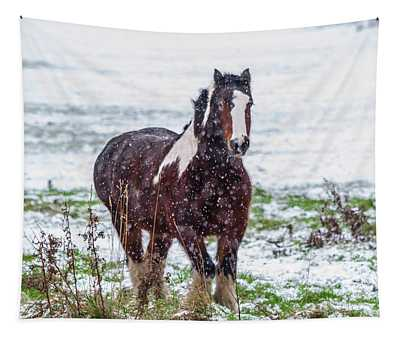 Brown Horse Galloping Through The Snow Tapestry