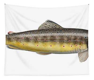 Brown Trout - Autochthonous - Indigenous - Salmo Trutta Morpha Fario - Salmo Trutta Fario Tapestry