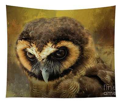 Brown Wood Owl Tapestry