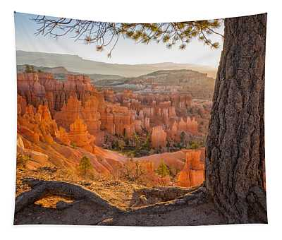 Bryce Canyon National Park Sunrise 2 - Utah Tapestry