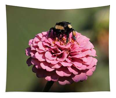 Bumble Bee On Zinnia 2649 Tapestry