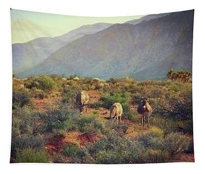 Burros At Bonnie Springs Ranch, Las Vegas Tapestry