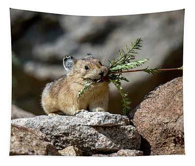Busy As A Pika Tapestry