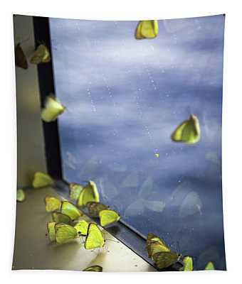 Sulfur Butterfly Wall Tapestries