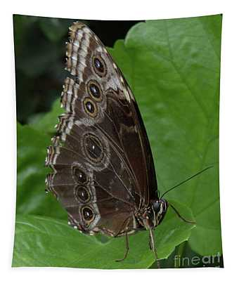 Butterfly 5 Tapestry