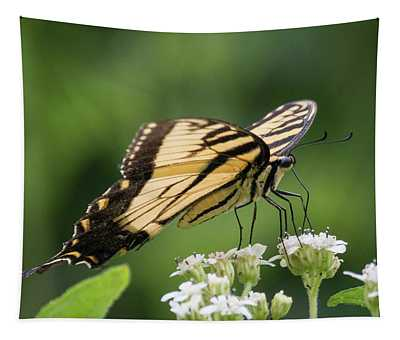 Butterfly Drinking Tapestry