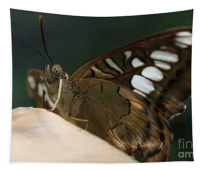 Butterfly Macro Tapestry