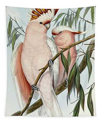 Cockatoo Paintings Wall Tapestries