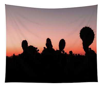 Sonora Desert Sunset Tapestry