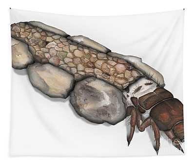 Caddisfly Larva Nymph Goeridae_silo_pallipes -  Tapestry