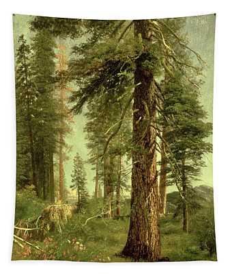 California Redwoods Tapestry