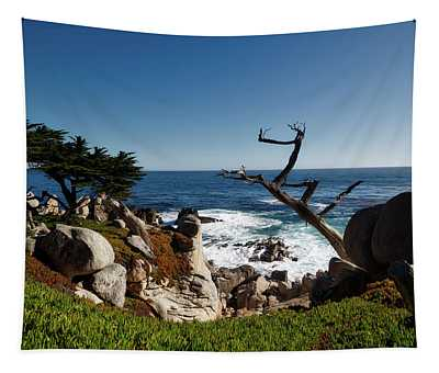 California's Pacific Beauty Tapestry