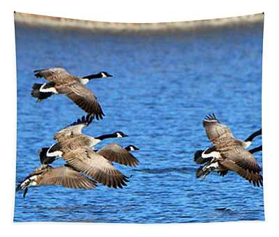 Canadian Geese  3660 Tapestry