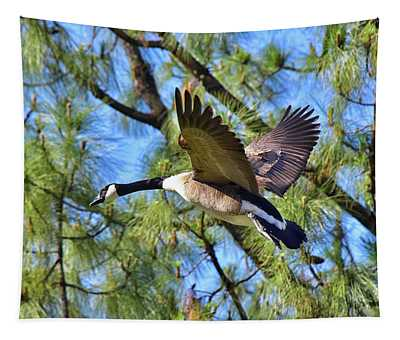 Canadian Goose Inflight 1  Tapestry