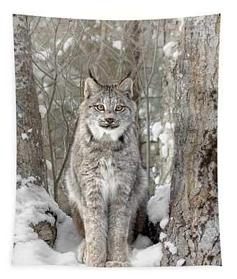 Canadian Wilderness Lynx Tapestry