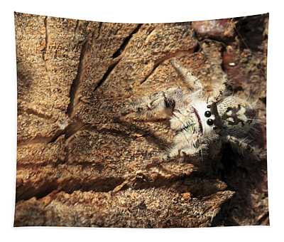Canopy Jumping Spider Tapestry