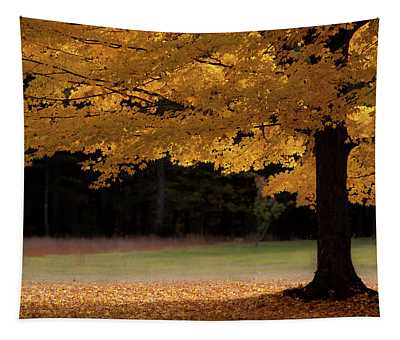 Canopy Of Autumn Gold Tapestry