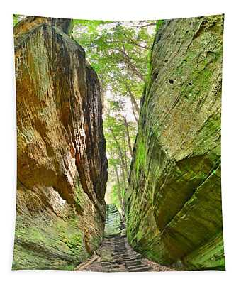 Cantwell Cliffs Trail Hocking Hills Ohio Tapestry