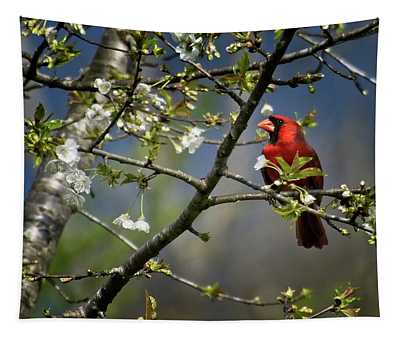 Cardinal Among The Blossoms Tapestry
