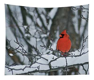 Cardinal And Snow Tapestry
