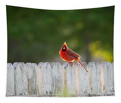 Cardinal At Dawn Tapestry