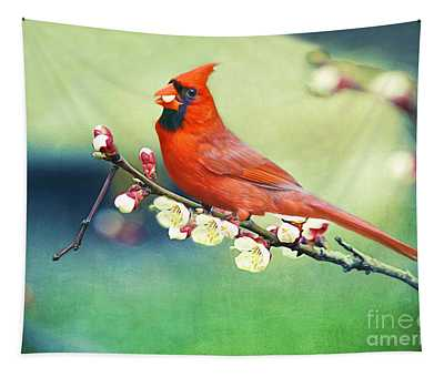 Cardinal On Apricot Branch Tapestry