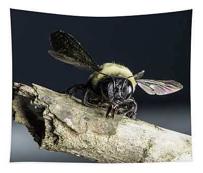 Carpenter Bee Tapestry