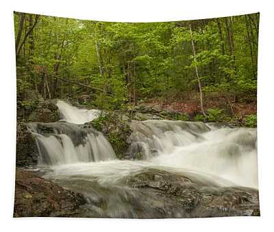 Cascades On The Brooks Falls Trail Tapestry