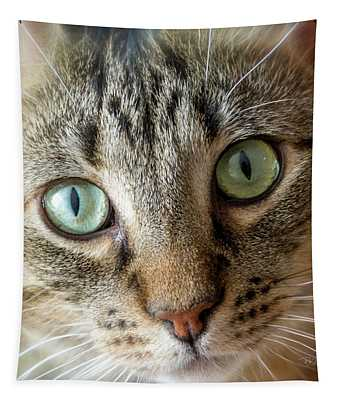 Cat Eyes With Glow Tapestry