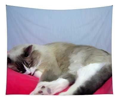 Cat Nap Tapestry