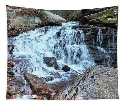 Cayuga Falls 2 - Ricketts Glen Tapestry