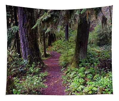 Cedar Creek Trail #3 Tapestry