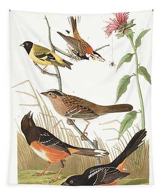 Cestnut-coloured Finch Tapestry