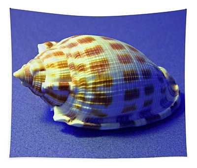 Checkered Helmet Seashell Tapestry