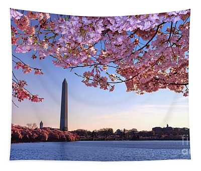 Cheery Cherry Dc Tapestry