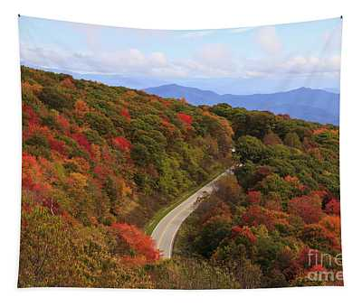 Cherohala Skyway In Nc Tapestry