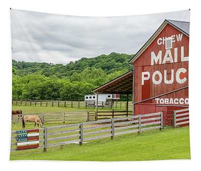Chew Mail Pouch - U.s. 62 #1 Tapestry