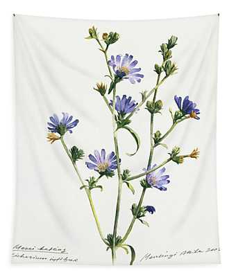 Chicory Tapestry